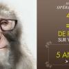 GrandOptical lance une nouvelle campagne pour son opération « pourcentage »signée Young & Rubicam